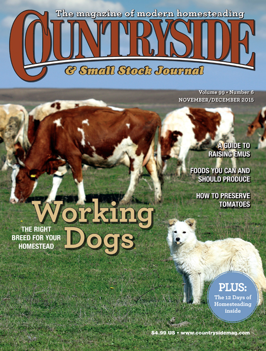 Countryside November/December 2015