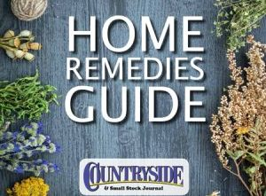Home Remedies Guide