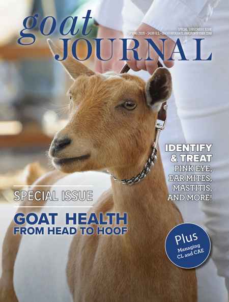 Goat Journal Special Issue 2020 — Head to Hoof