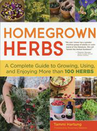 Homegrown Herbs: Growing Herbs Outdoors In Pots, Raised Beds and Gardens