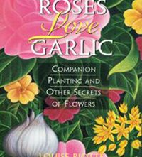 Roses Love Garlic
