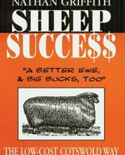 Sheep Success