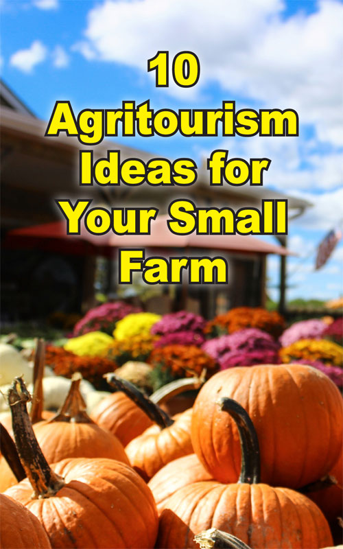 Agritourism Ideas