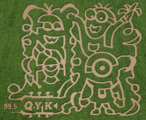 Harvestmoon farm's 5 acre themed Minion corn maze.
