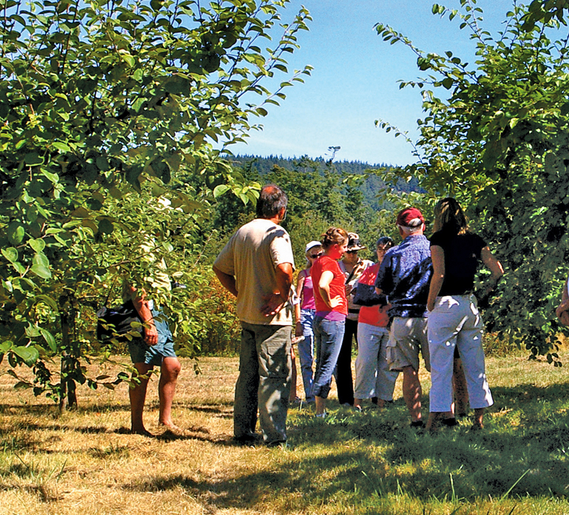 Small-Scale Agritourism Ideas to Boost Profits