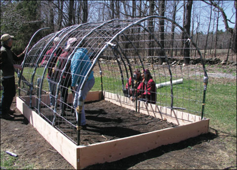 How to Build a Cattle Panel Hoop House - Countryside Raised Bed Hoop House Plans on pvc hoop greenhouse plans, raised beds from found materials, raised garden hoop, printable greenhouse plans, raised garden beds designs, garden bed plans, raised bed building plans, simple greenhouse plans, raised bed planting plans, raised bed planter box plans, raised bed greenhouse plans, raised bed gardening plans,
