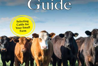 Cattle Guide Flip Book