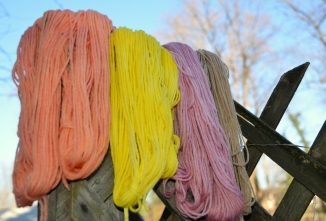 Solar Dyeing Wool Using Natural Plants