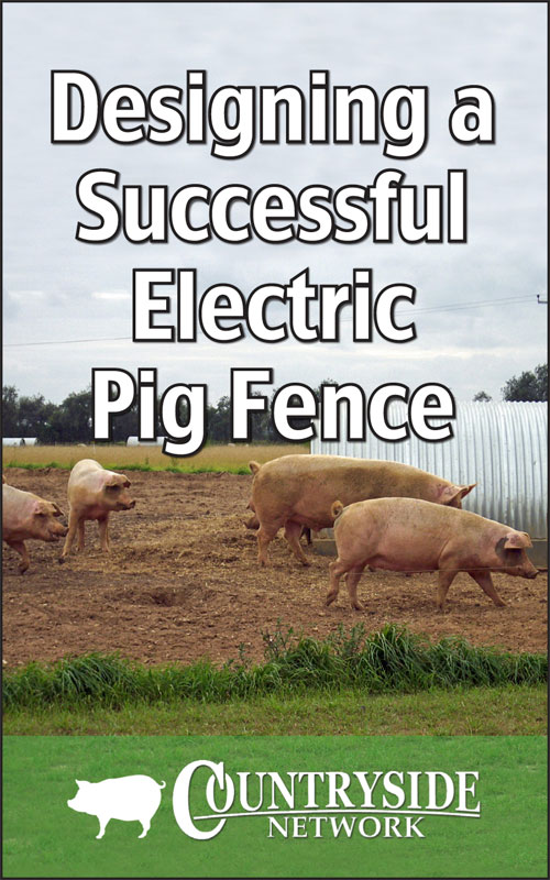 Successful Electric Pig Fence