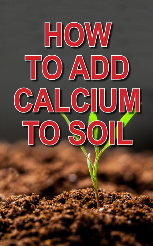Add Calcium to Soil