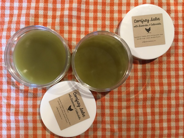 How to Make a Comfrey Salve for Chickens