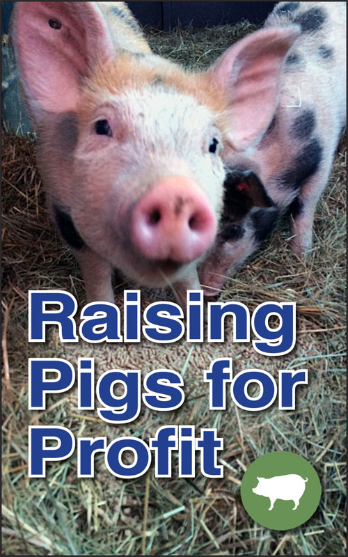 Pigs for Profit