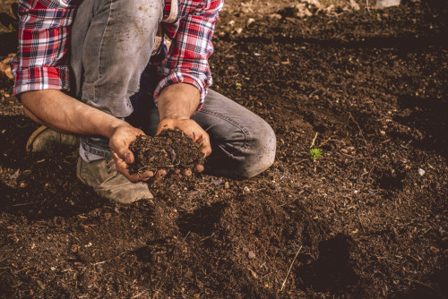 Soil Health: What Makes Good Soil?