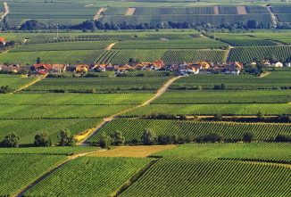 A Tale of Two Soil Cities