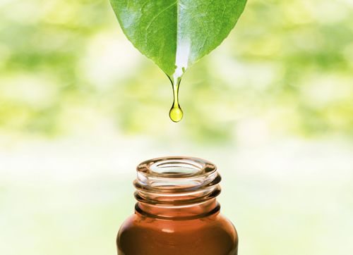 A Complete Essential Oils Guide