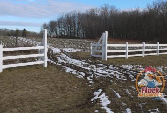Proper Fence Post Depth to Build Strong Fences