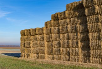 Build an Inexpensive Hay Shed