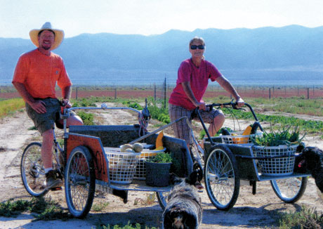 Make a Handy DIY Cargo Bike