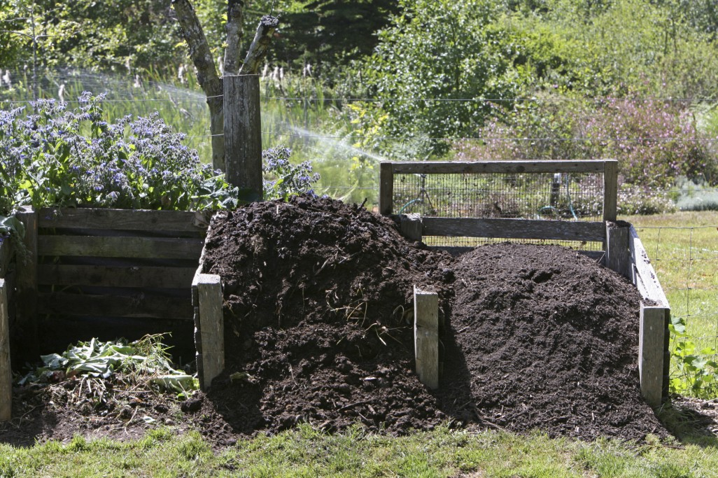 A Complete Guide To How Compost At Home Countryside