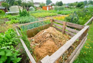 The K.I.S.S. Approach to How to Make Compost