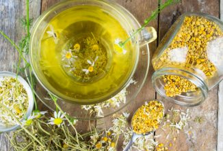 4 Healing Herbs to Grow, Including Chamomile Plant