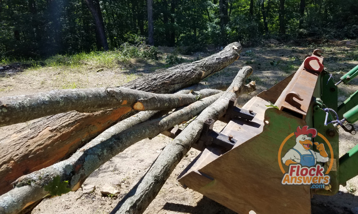 Firewood Management With Pallet Forks For Tractors