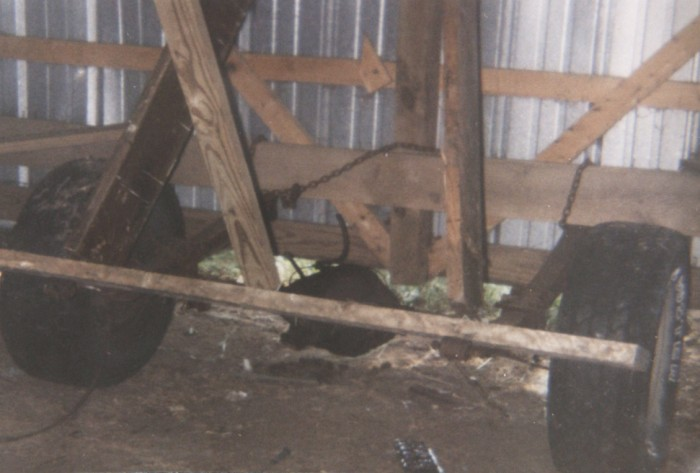 Turning Two Outbuildings into a Cheap Metal Shed