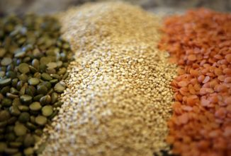 Growing Vegan Proteins, from Amaranth Plants to Pumpkin Seeds