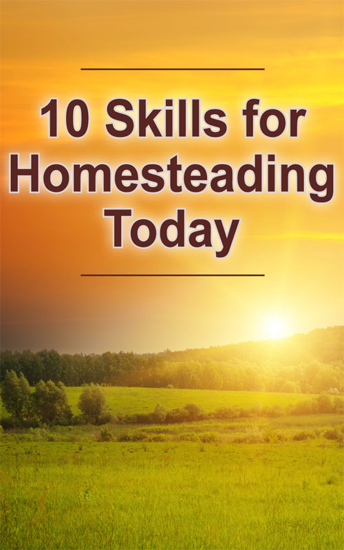 10 Homesteading Skills