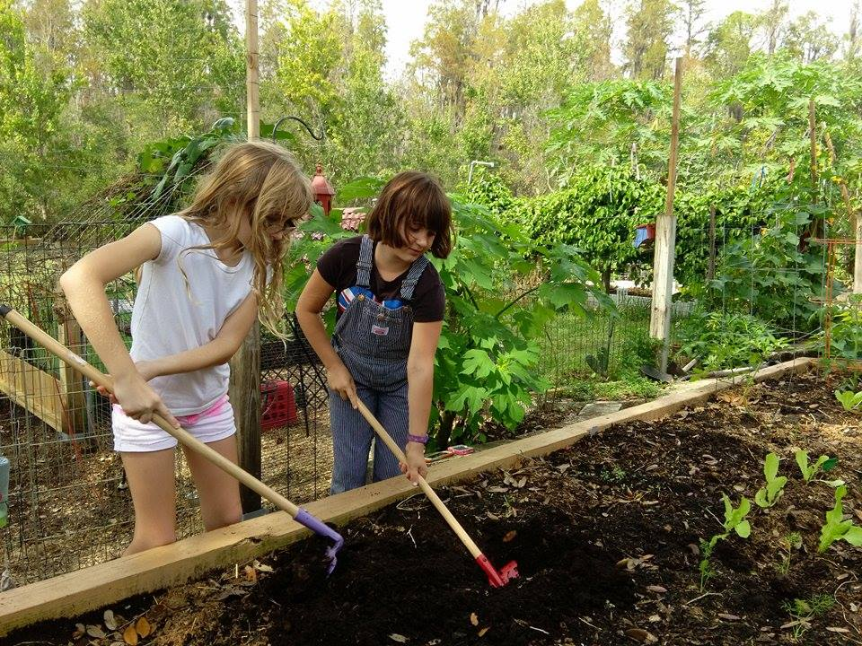 Growing a Community with School Garden Grants