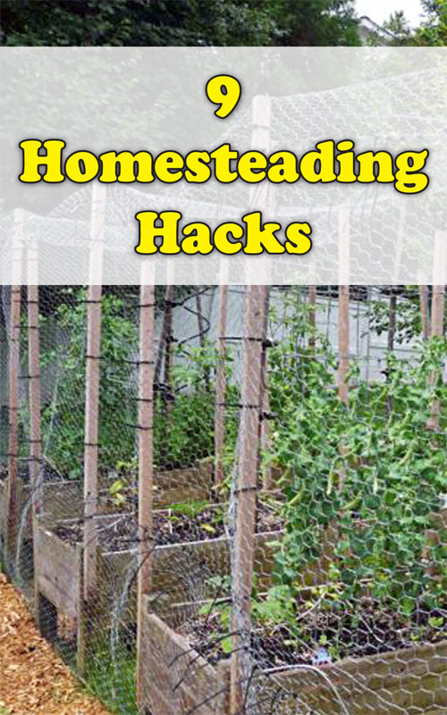 HOmesteading Hacks