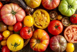 Heirloom Tomatoes Withstand the Test of Time