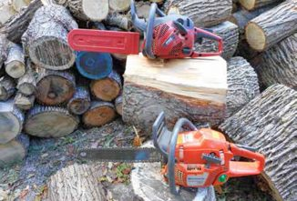 Buying a Chainsaw? Which One?