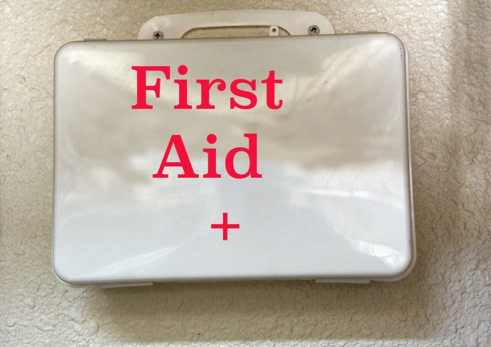 15 Essential First Aid Kit Contents