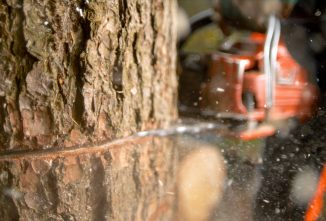Safety Tips for Dangerous Tree Felling