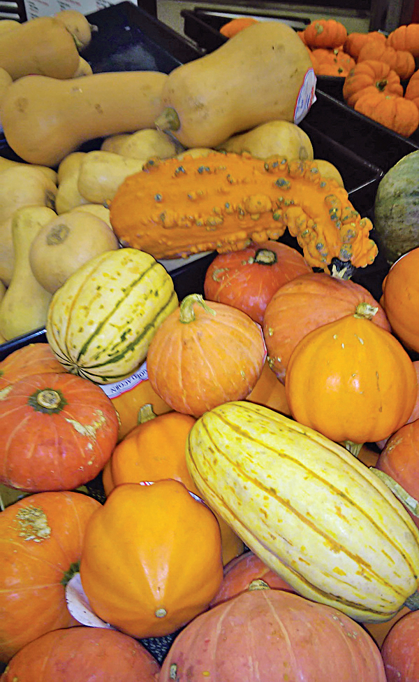 Gourds For Farmers And Homesteaders