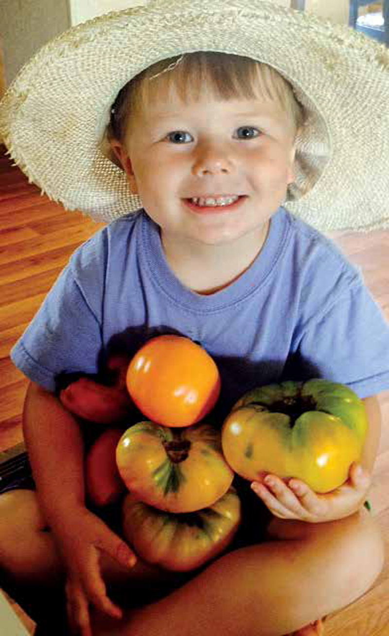 Six Steps To Starting And Saving Heirloom Tomatoes