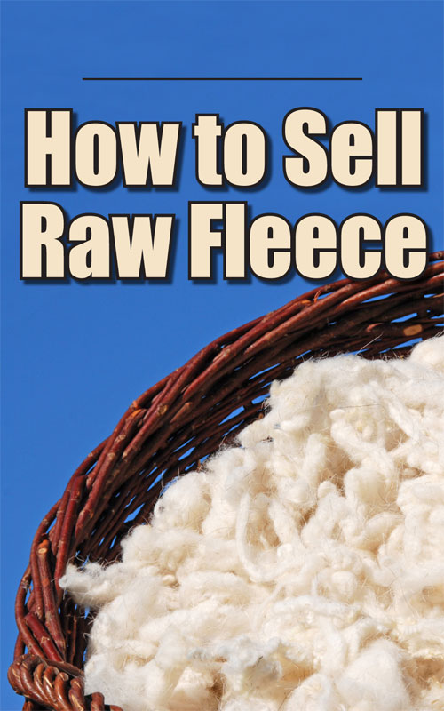 Sell Raw Fleece