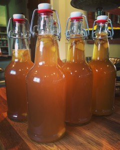 how-to-make-kombucha