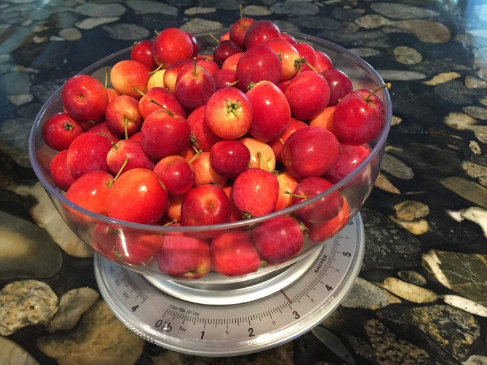 crab-apple-recipes