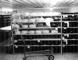"""Steve and Jody Read, Shepherd's Way, Nerstrand, MN, milk more than 600 sheep. Jody is the licensed cheesemaker at their state-of-the-art cheese plant, and says a big batch of cheese uses 4,000 lbs. of milk, while 800 lbs. is considered a """"small"""" batch. The Reads opened a small cheese store on their premises which is open on Saturday mornings and run by one of their young sons."""