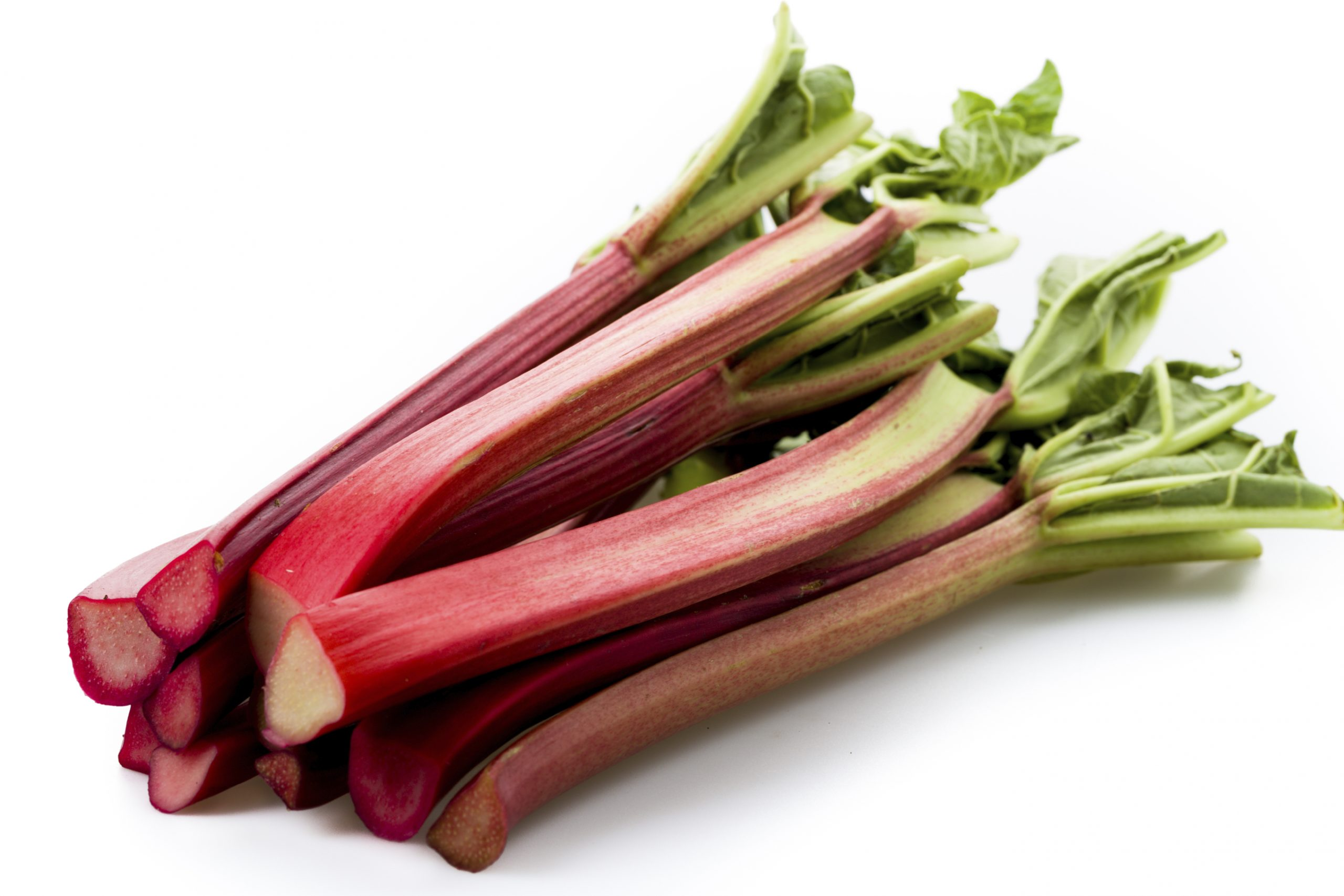 A Rhubarb Juice Recipe for Canning