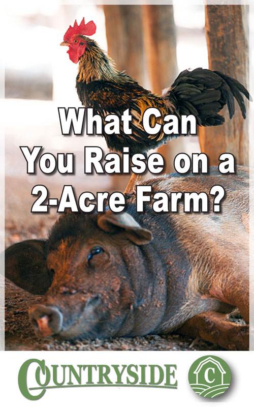 Raise on 2 Acre Farm