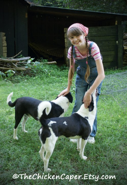 good-farm-dogs-are-priceless
