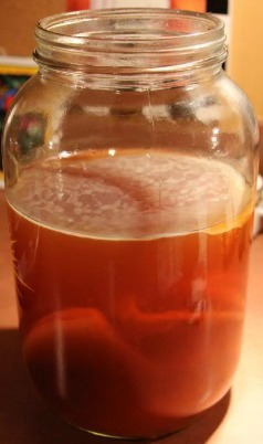 kombucha-benefits