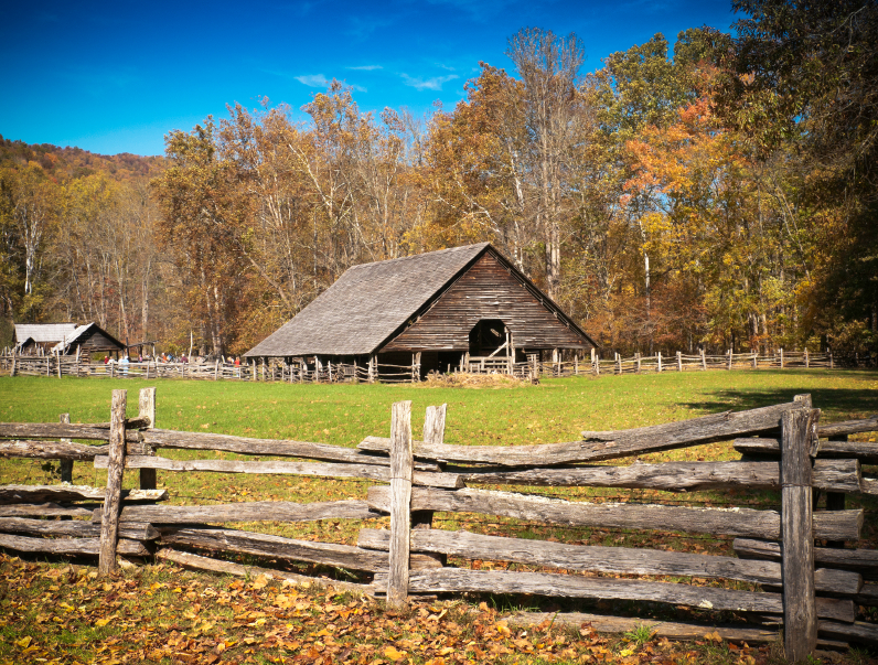 Designing Your Ideal Homesteading Land Countryside