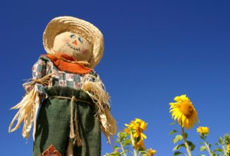 How to Make a Scarecrow That Actually Works