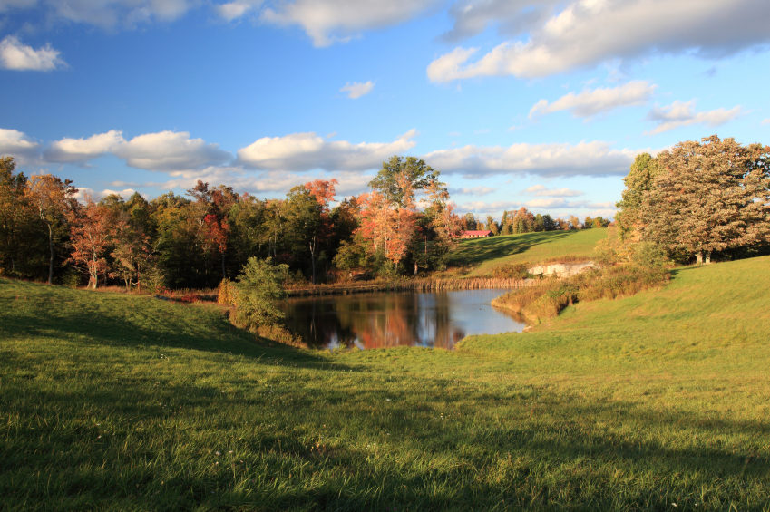 Your Guide To Farm Pond Design Countryside