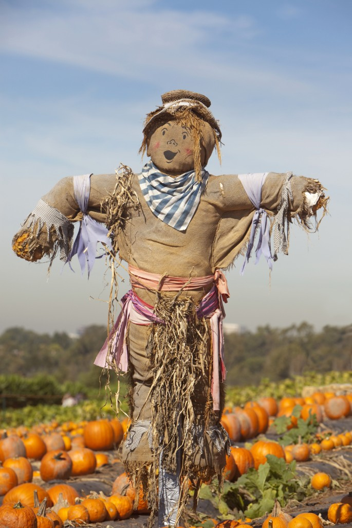 how-to-make-a-scarecrow
