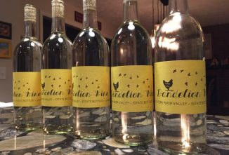 A Homemade Dandelion Wine Recipe
